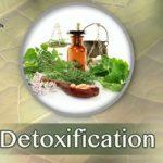 Detoxification Seminar and Free B12 Boost