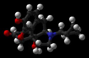 low dose naltrexone pregnant