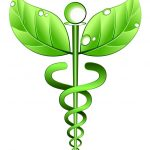 The Six Guiding Principles of Naturopathic Medicine